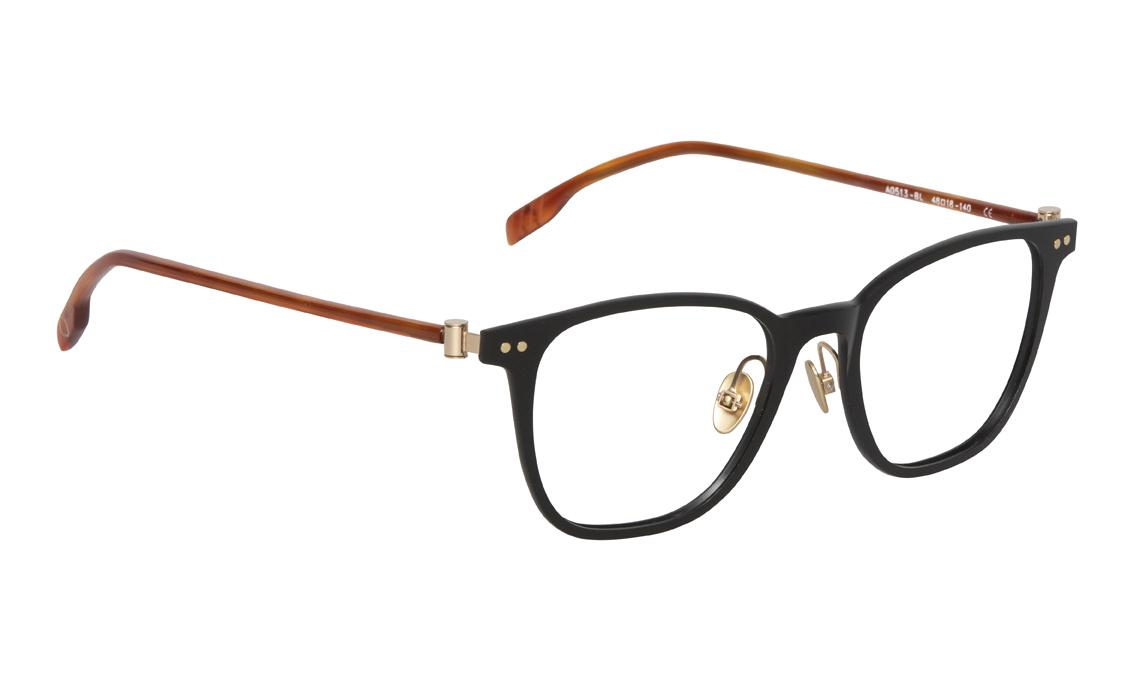 AO513_BL_2 Adults Eyewear