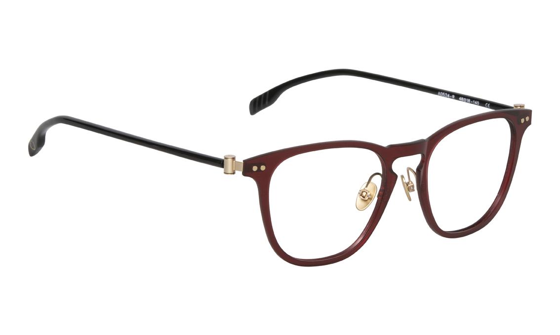 AO524_R_2 Adults Eyewear